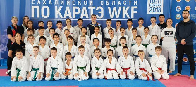 Тренировочный сбор под руководством Чемпиона Мира