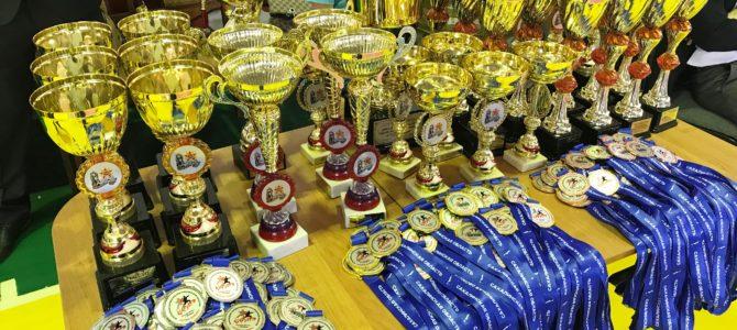 Командное первенство Сахалинской области по каратэ WKF состоялось