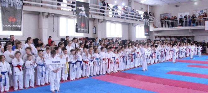 В Южно-Сахалинске пройдут региональные соревнования по олимпийскому каратэ, посвященные Дню защитника Отечества